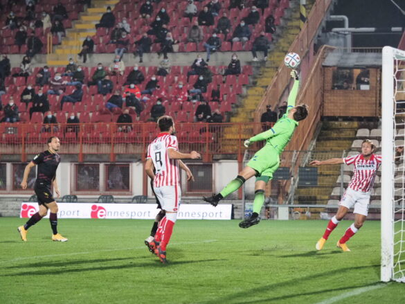 LR Vicenza-Salernitana @sportvicentino