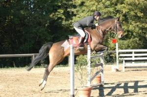 Sport Equestri a Scuola, protocollo regione Veneto - Fise